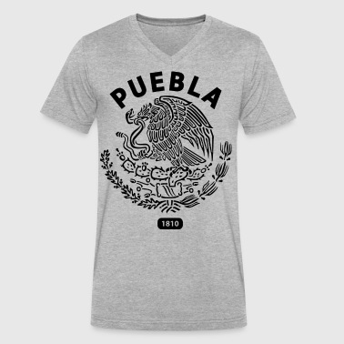 Puebla Mexico T Shirt - Men's V-Neck T-Shirt by Canvas