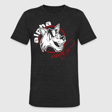 Alpha Music Alpha Male - Unisex Tri-Blend T-Shirt