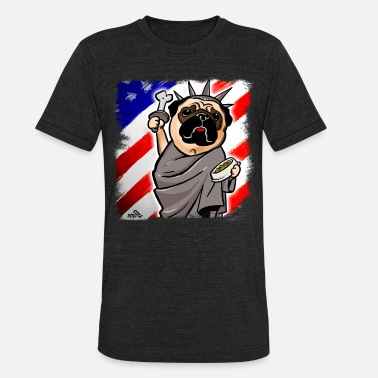 Seem Used Independence Day Pug Funny pug dog who seems to be - Unisex Tri-Blend T-Shirt
