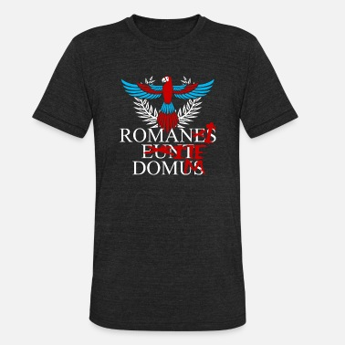 Christian Romans 1 16 Romans T - shirt - Go home - Unisex Tri-Blend T-Shirt