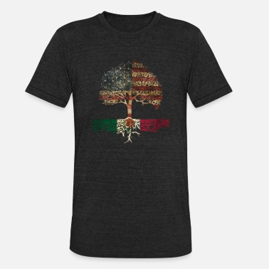 Mexican Art The Mexican-American - Unisex Tri-Blend T-Shirt