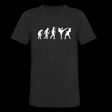 Kickboxing - Kickboxing evolution - Unisex Tri-Blend T-Shirt