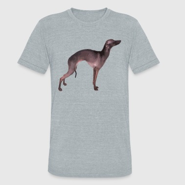 Italian Greyhound Shirt - Unisex Tri-Blend T-Shirt