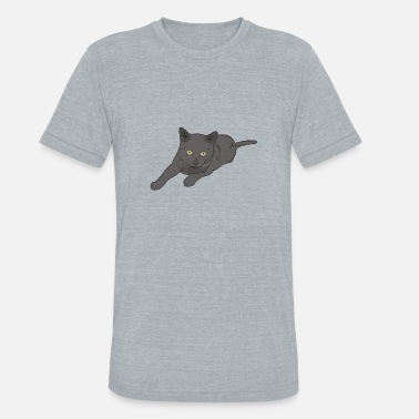 Male Cat Male Cat - Unisex Tri-Blend T-Shirt