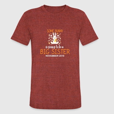 Easter Bunny Big Sister In November 2018 Cute - Unisex Tri-Blend T-Shirt
