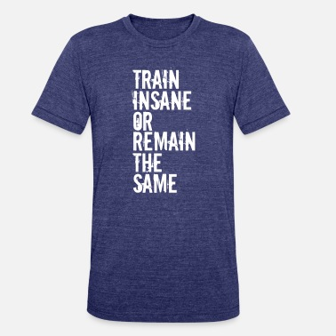 Train Insane Or Remain The Same - Unisex Tri-Blend T-Shirt