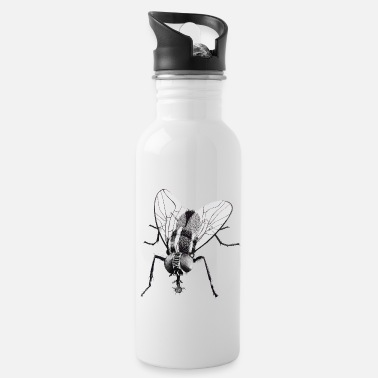 Fly Black fly insect - Water Bottle