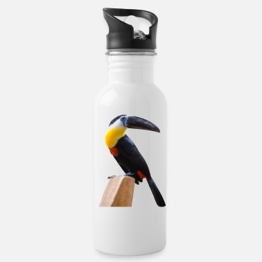 Beak long beak Birds - Water Bottle