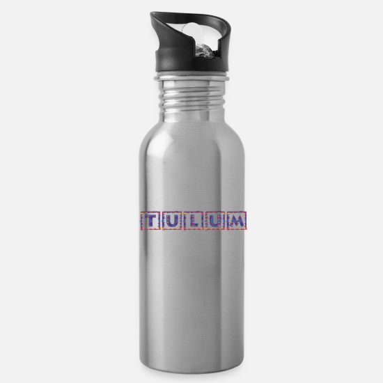 2020 Mugs & Drinkware - Family Vacation Tulum 2020 - Water Bottle silver