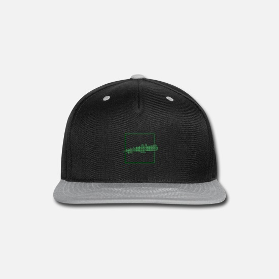 Birthday Caps - Reptile - Snapback Cap black/gray