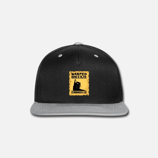 Paradox Caps - Schrodingers Cat Wanted Dead Or Alive Paradox Gift - Snapback Cap black/gray