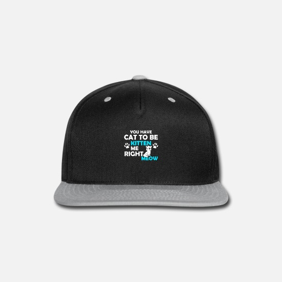 Young Caps - YOU HAVE CAT TO BE - Snapback Cap black/gray