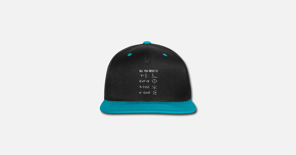 ae704a9bc9f All You Need Is That math Snapback Cap