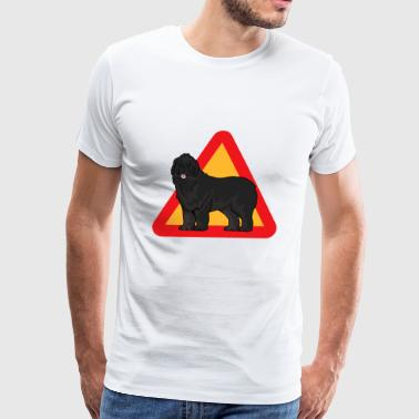 Newfoundland Dog - Men's Premium T-Shirt
