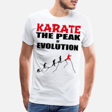 Developer Art Karate evolution - Men's Premium T-Shirt