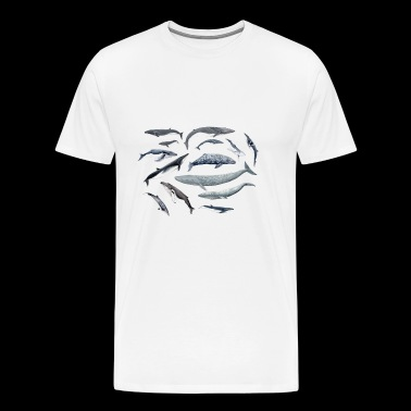 Whales around - Men's Premium T-Shirt