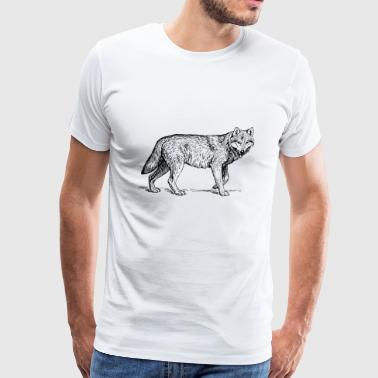 Wolf Drawing - Men's Premium T-Shirt