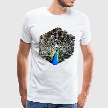 Peacock Showing Off - Hexagon Geometry Shapes - Men's Premium T-Shirt