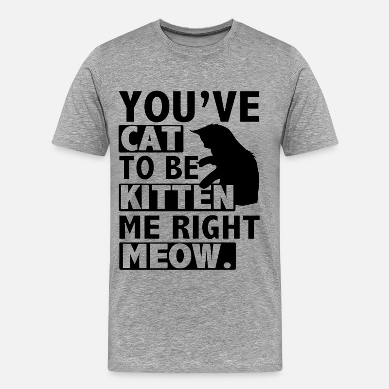 Animal T-Shirts - You've cat to be kitten me right meow - Men's Premium T-Shirt heather gray