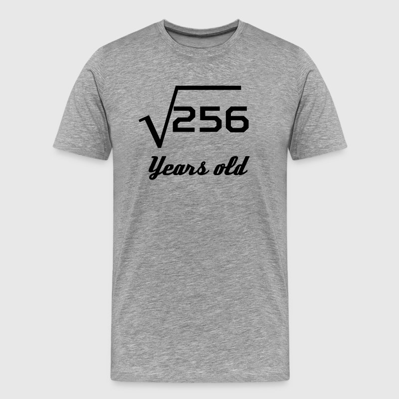 Square Root Of 256 16 Years Old - Men's Premium T-Shirt