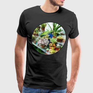 Greenhouse With Cactus - Men's Premium T-Shirt