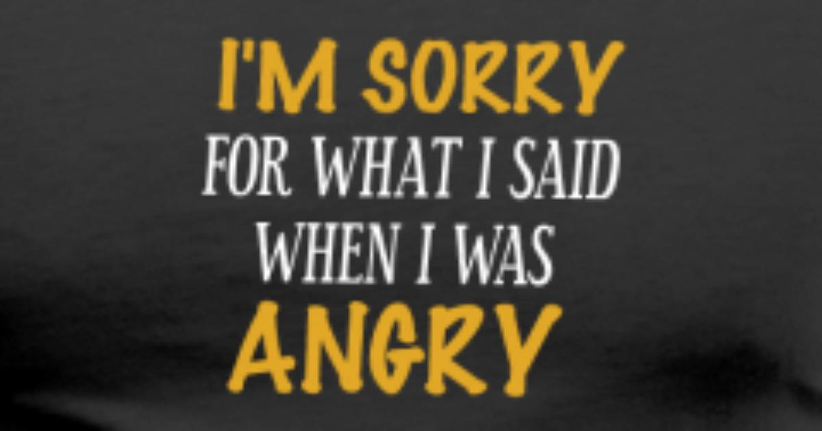 I m sorry for what i said when i was angry t shirt spreadshirt altavistaventures Images