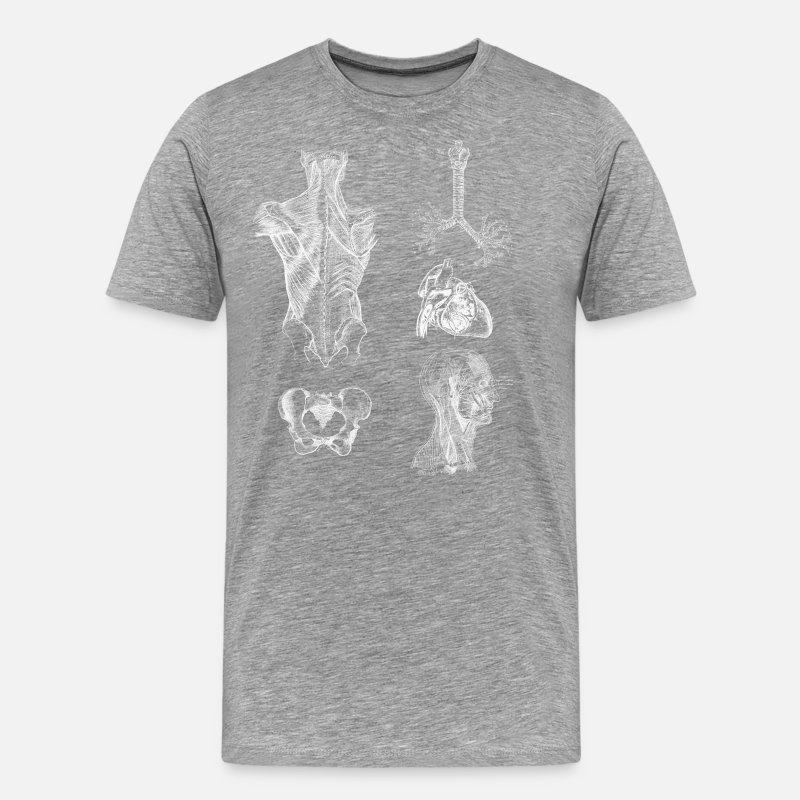 Vintage Human Body Anatomy Mens Premium T Shirt Spreadshirt