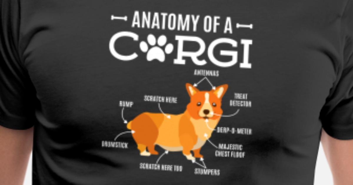 Anatomy Of A Corgi Funny Dog Lover Gift Mens Premium T Shirt