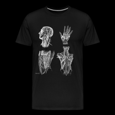 Vintage Human Muscle Anatomy - Men's Premium T-Shirt