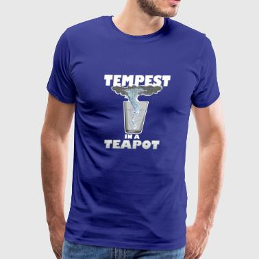 You know that's all a tempest in a teapot - Men's Premium T-Shirt