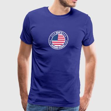 COLORADO SPRINGS - Men's Premium T-Shirt
