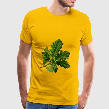 Sessile oak (detailed) - Men's Premium T-Shirt