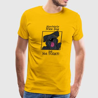Absolutely nice dog, but not today! - Men's Premium T-Shirt