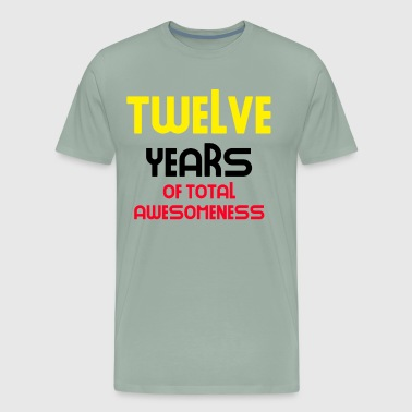 twelve years of total awesomeness cute birthday gift idea - Men's Premium T-Shirt