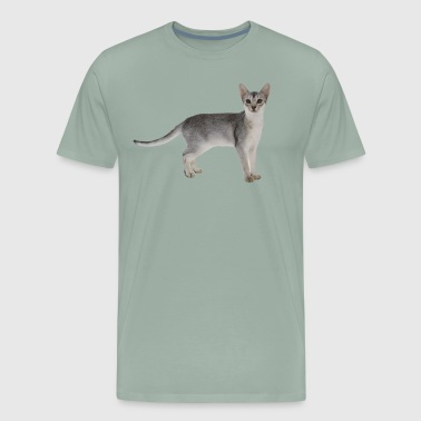 GREY AND WHITE SPECKLED KITTY - Men's Premium T-Shirt