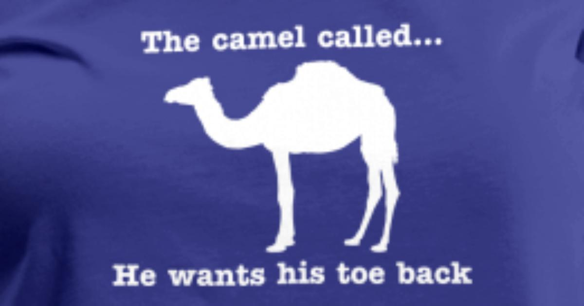 gigantic-epic-camel-shape-vagina-picture