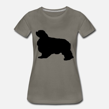 Curtain english toy spaniel silo - Women's Premium T-Shirt