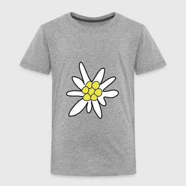 Edelweiss, ghostweed - Toddler Premium T-Shirt