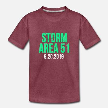 Storm Area 51 Vintage - Toddler Premium T-Shirt