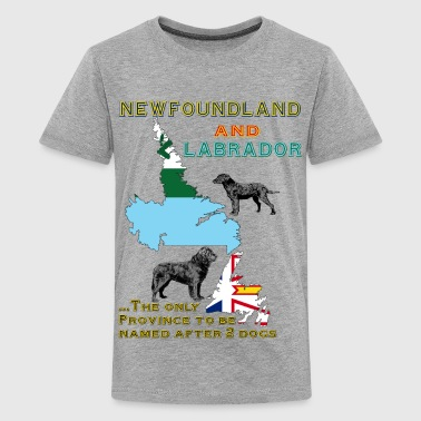 Newfoundland and Labrador dogs - Kids' Premium T-Shirt