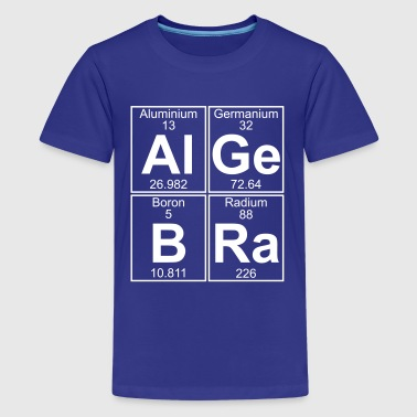 Aluminium Element Al-Ge-B-Ra (algebra) - Full - Kids' Premium T-Shirt
