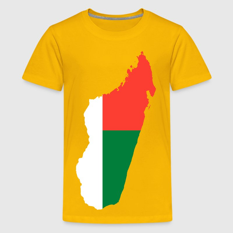 Madagascar Flag Map - Kids' Premium T-Shirt