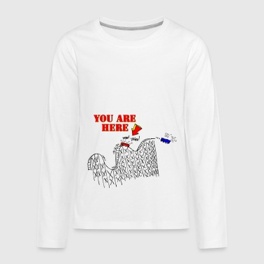 The Birthday Roller Coaster - Kids' Premium Long Sleeve T-Shirt