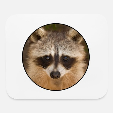 Cute Animals racoon cute animal - Mouse Pad