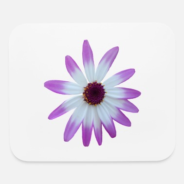 Flowers purple, flower, pink, blossom, nature, blooms - Mouse Pad