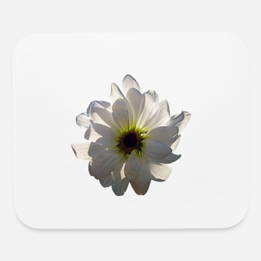 White Backlit White Daisy - Mouse Pad