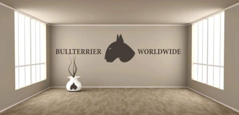 Showroom - Bullterrier World