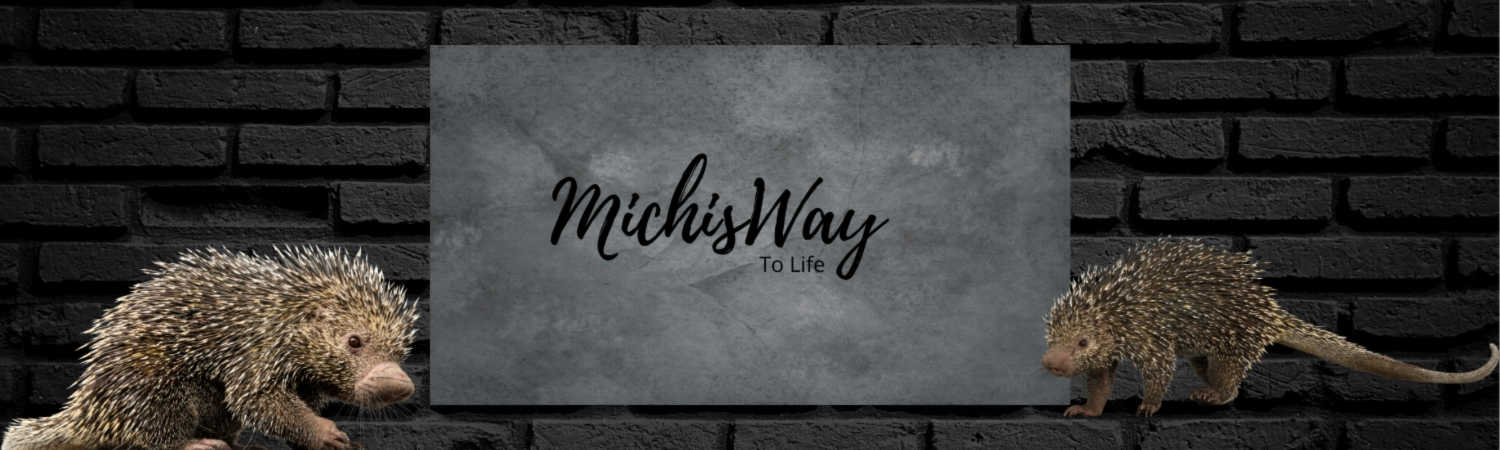 Showroom - michisway
