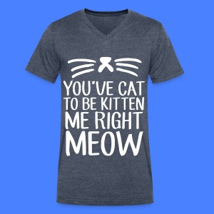 You've Cat To Be Kitten Me Right Meow T-Shirts - Men's V-Neck T-Shirt by Canvas