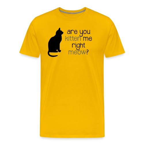 Right Meow Fitted Tee - Men's Premium T-Shirt